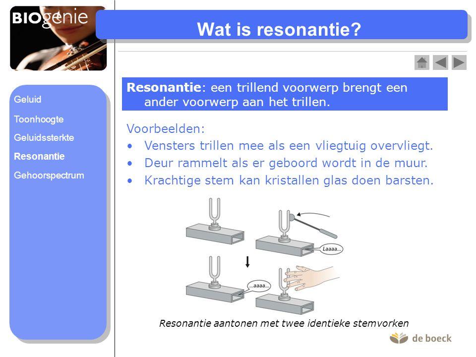Wat is resonantie Resonantie: een trillend voorwerp brengt een ander voorwerp aan het trillen. Geluid.