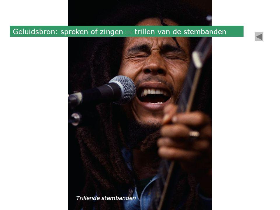 Geluidsbron: spreken of zingen  trillen van de stembanden