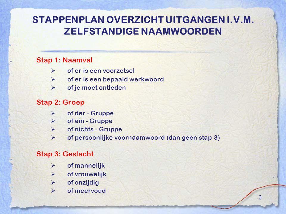 STAPPENPLAN OVERZICHT UITGANGEN I.V.M. ZELFSTANDIGE NAAMWOORDEN