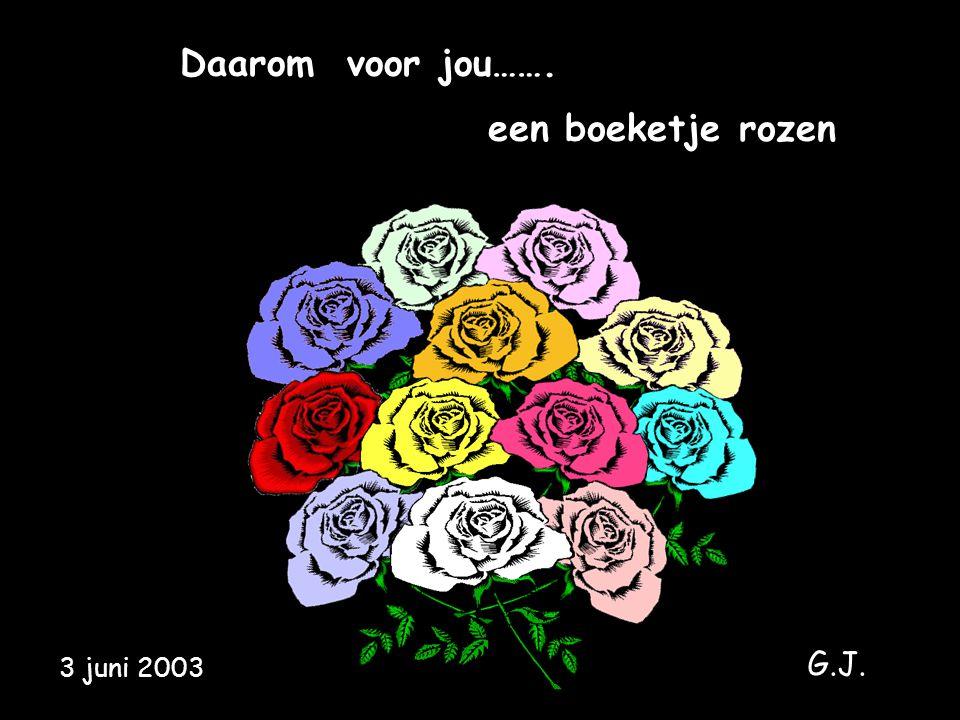 Daarom voor jou……. een boeketje rozen G.J. 3 juni 2003