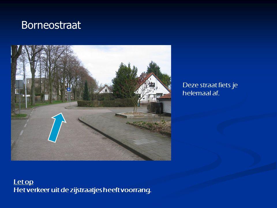 Borneostraat Deze straat fiets je helemaal af. Let op
