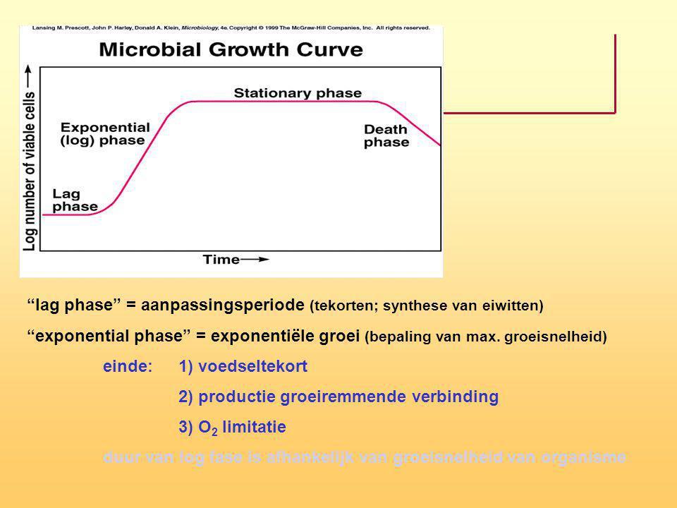 lag phase = aanpassingsperiode (tekorten; synthese van eiwitten)