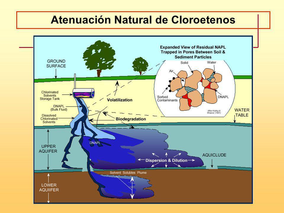 Atenuación Natural de Cloroetenos