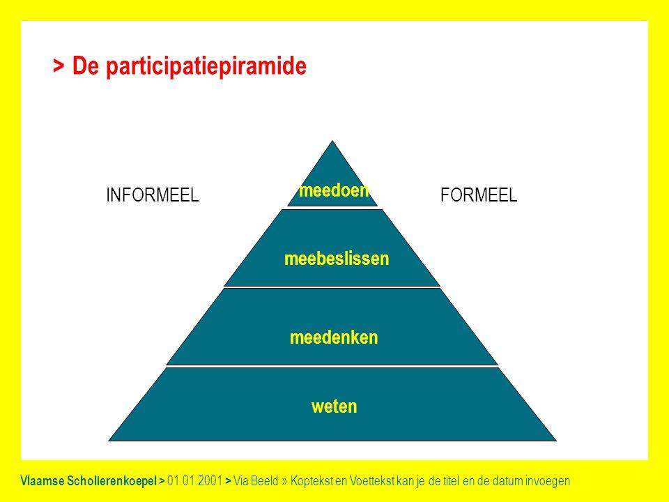 De participatiepiramide