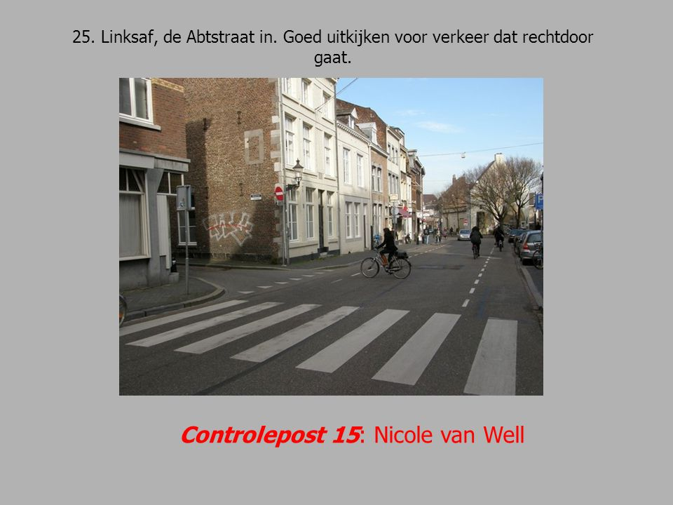 Controlepost 15: Nicole van Well