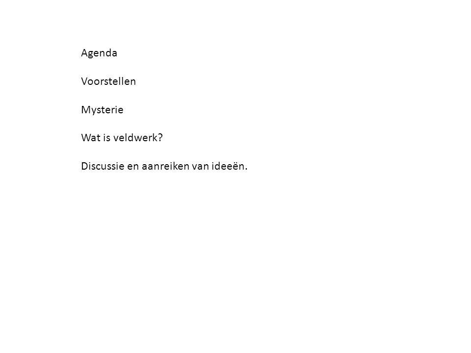 Agenda Voorstellen Mysterie Wat is veldwerk Discussie en aanreiken van ideeën.