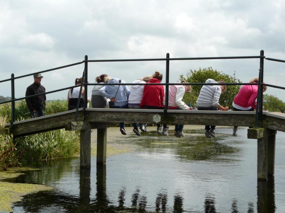 Vogelaar geeft uitleg middenin de polder bij Aarlander (molenviergang, grutto s)