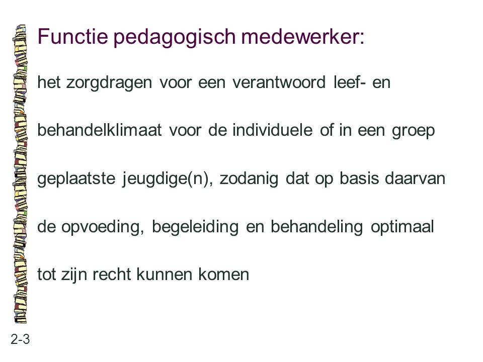 Functie pedagogisch medewerker: