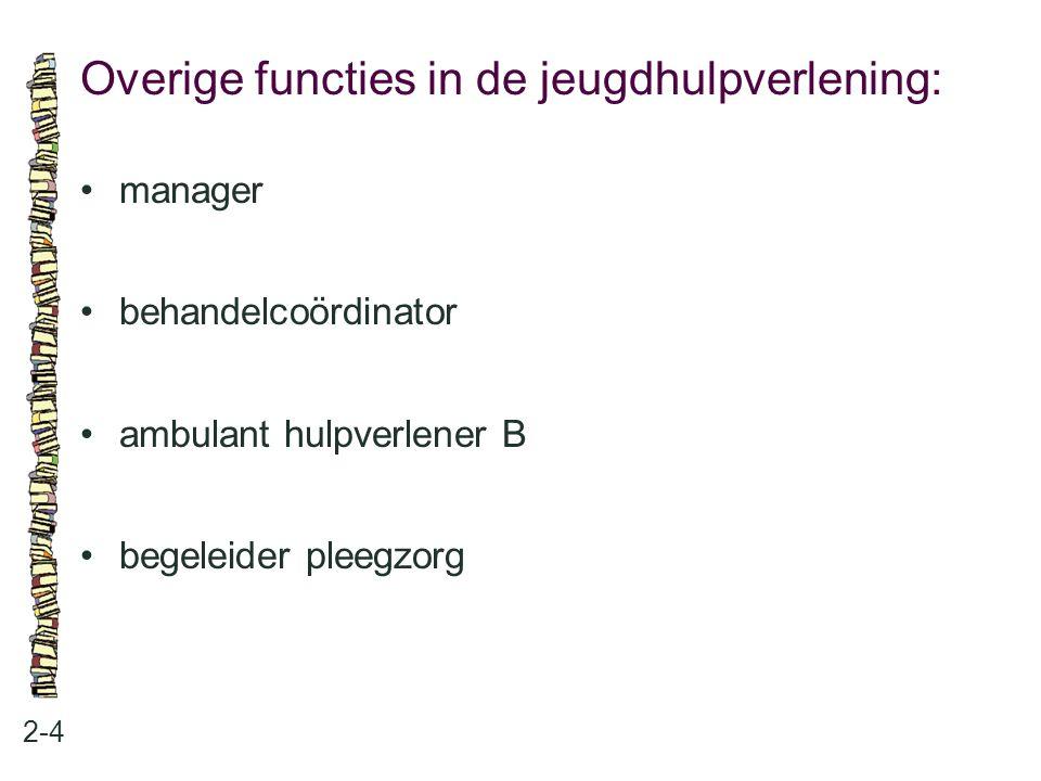 Overige functies in de jeugdhulpverlening: