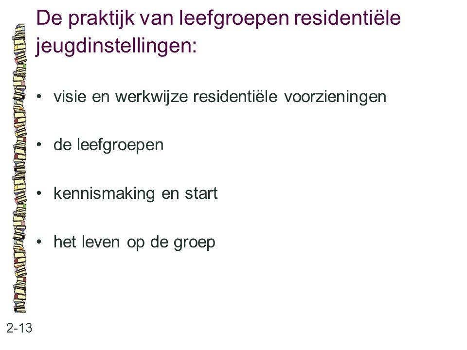 De praktijk van leefgroepen residentiële jeugdinstellingen: