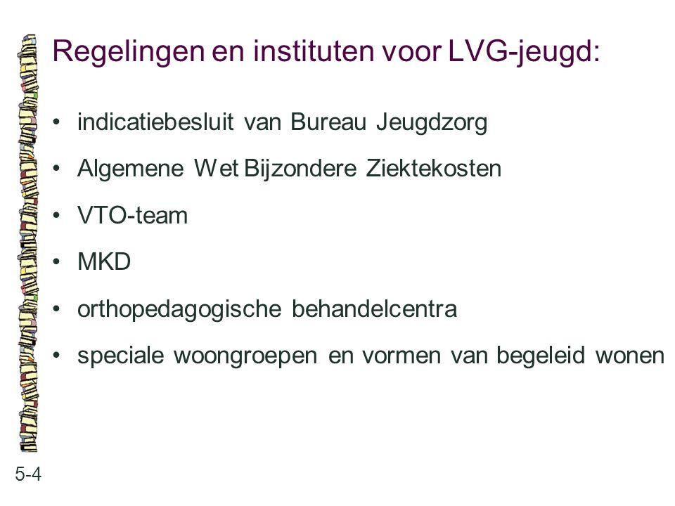 Regelingen en instituten voor LVG-jeugd: