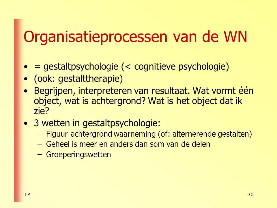 Organisatieprocessen van de WN