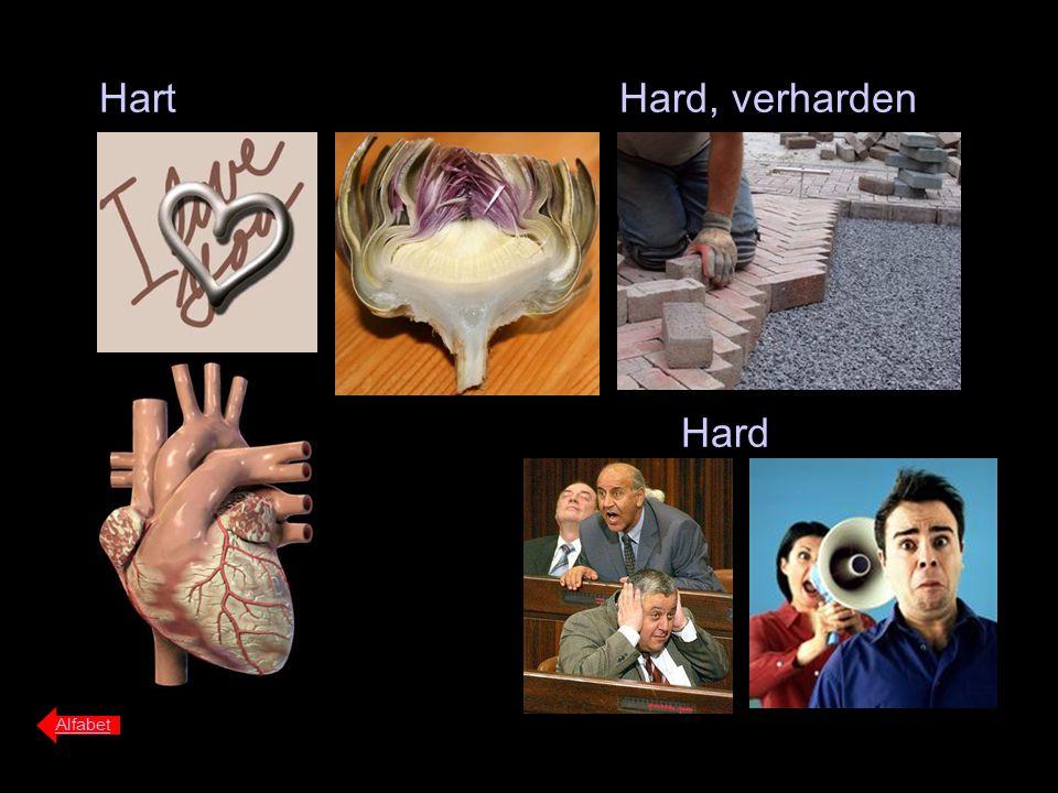 Hart Hard, verharden Hard Alfabet