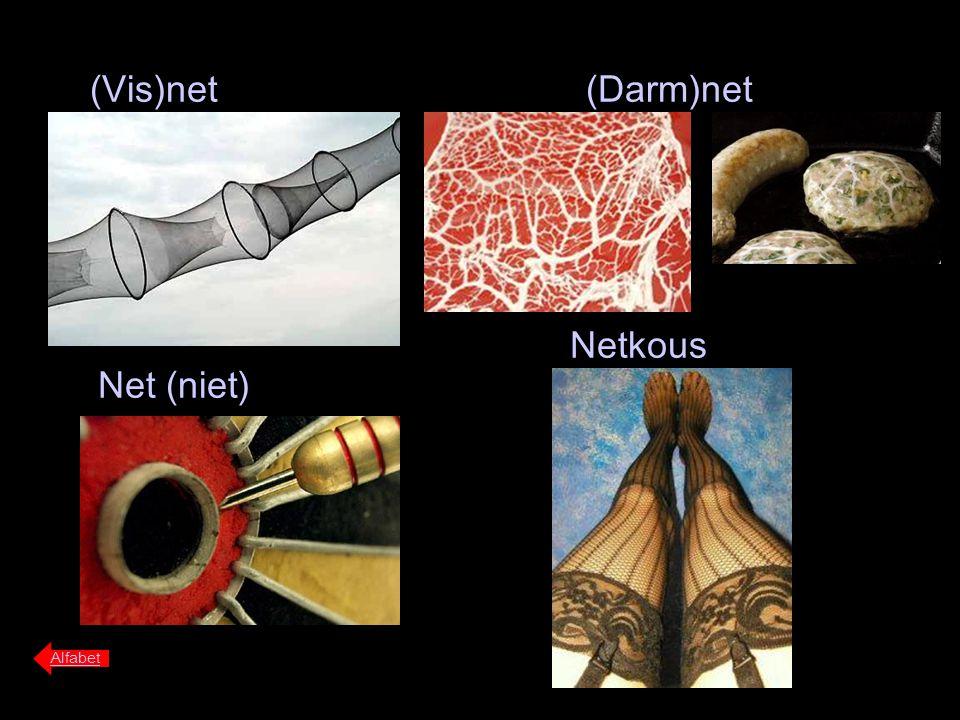 (Vis)net (Darm)net Netkous Net (niet) Alfabet