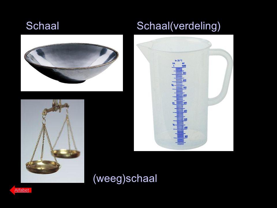 Schaal Schaal(verdeling) (weeg)schaal Alfabet