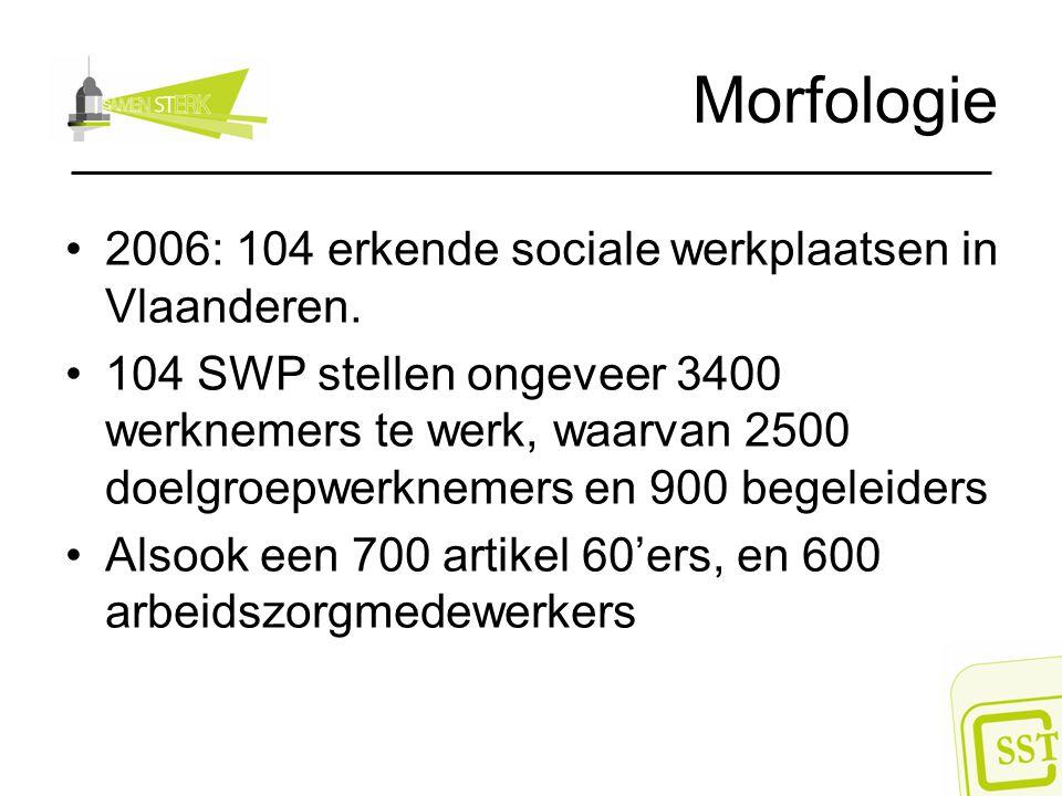 Morfologie 2006: 104 erkende sociale werkplaatsen in Vlaanderen.