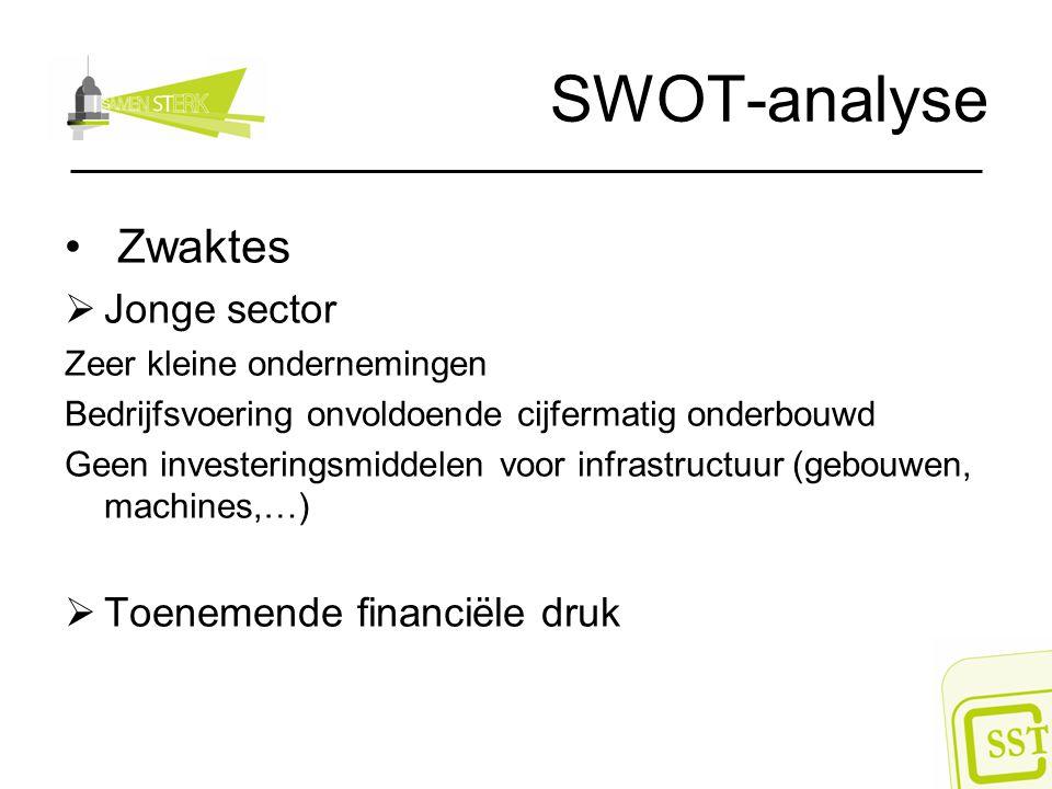 SWOT-analyse Zwaktes Jonge sector Toenemende financiële druk