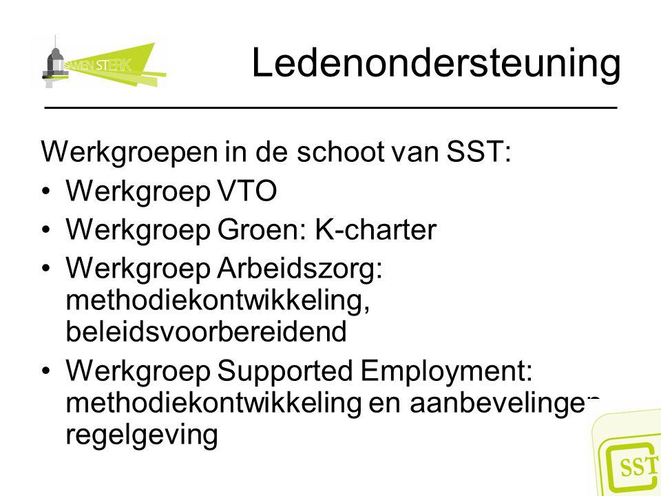 Ledenondersteuning Werkgroepen in de schoot van SST: Werkgroep VTO