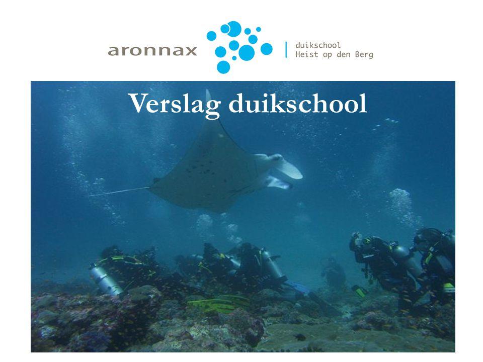 Verslag duikschool Verslag duikscholing