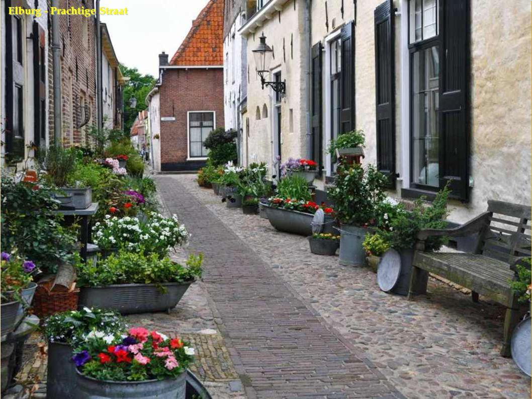 Elburg - Prachtige Straat