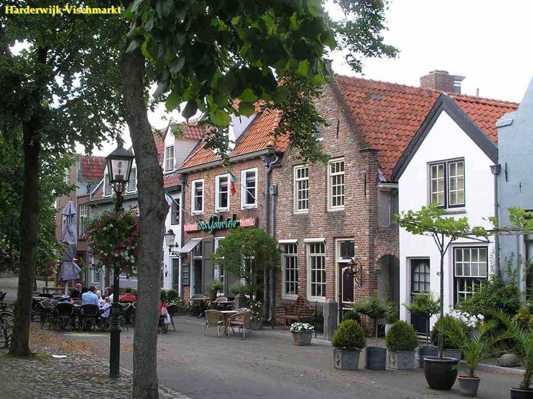 Harderwijk Vischmarkt