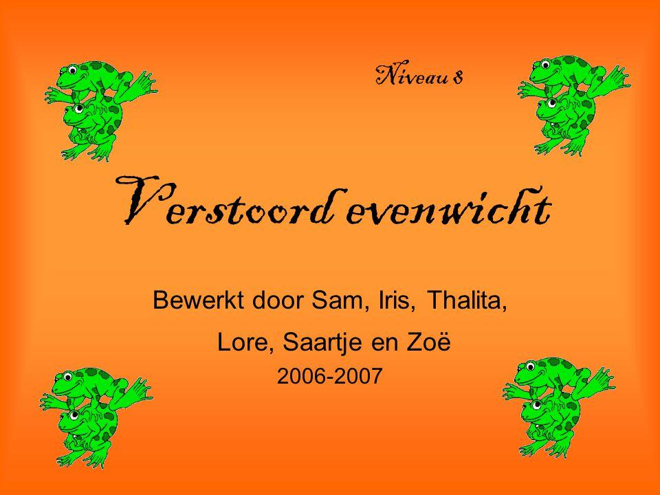 Bewerkt door Sam, Iris, Thalita, Lore, Saartje en Zoë 2006-2007