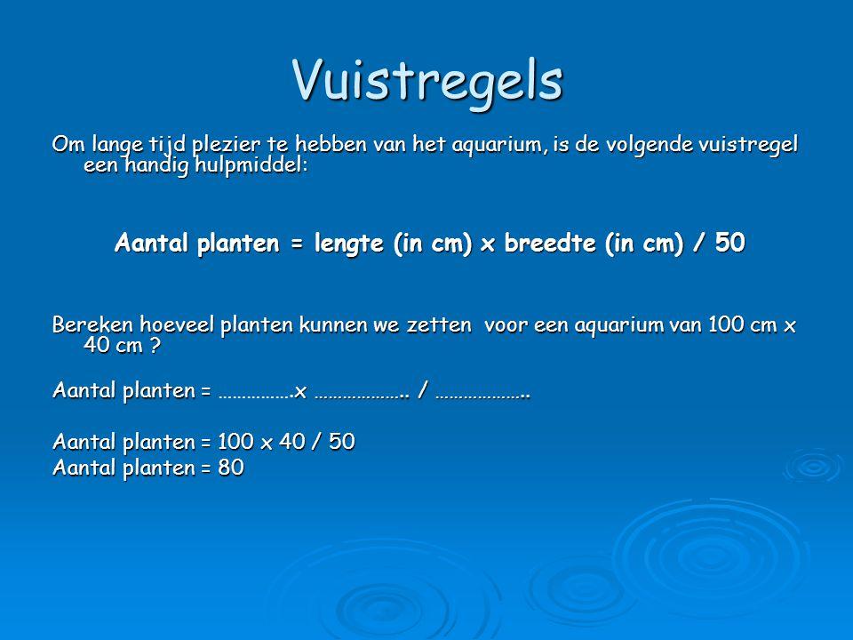 Aantal planten = lengte (in cm) x breedte (in cm) / 50
