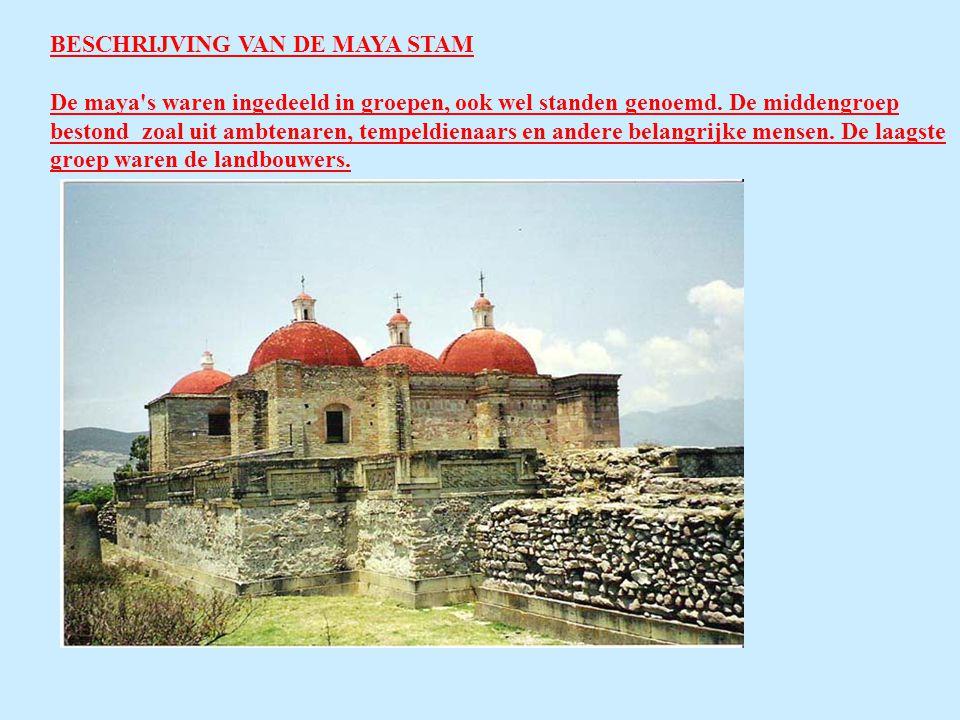 BESCHRIJVING VAN DE MAYA STAM De maya s waren ingedeeld in groepen, ook wel standen genoemd.