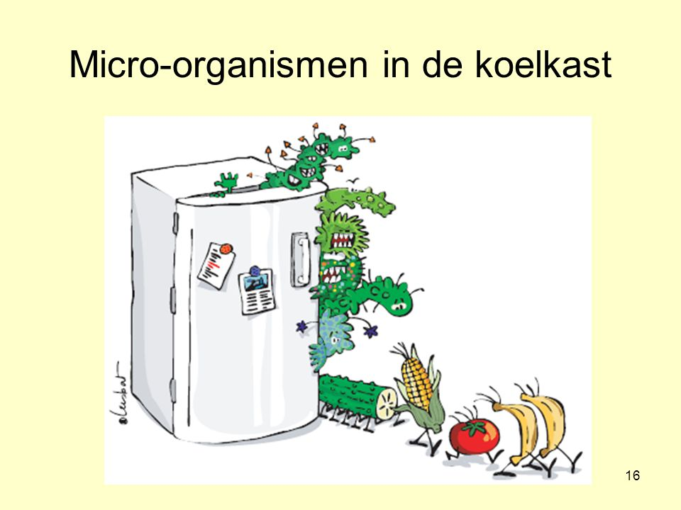 Micro-organismen in de koelkast
