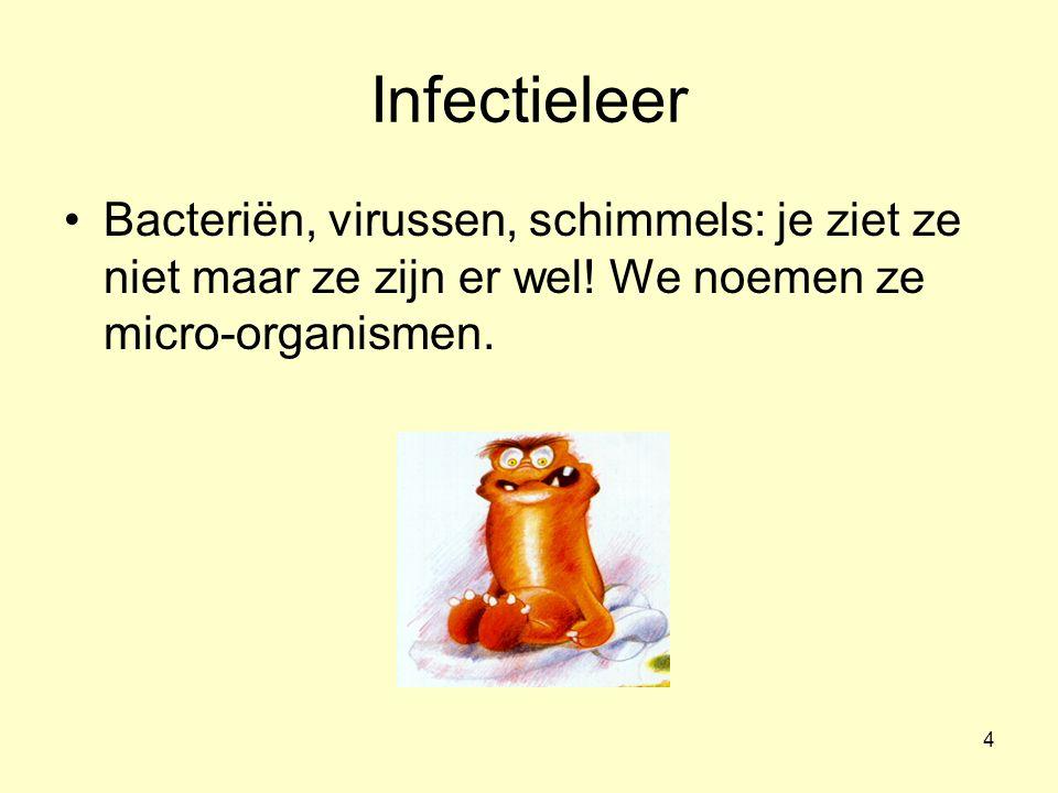 Infectieleer Bacteriën, virussen, schimmels: je ziet ze niet maar ze zijn er wel.