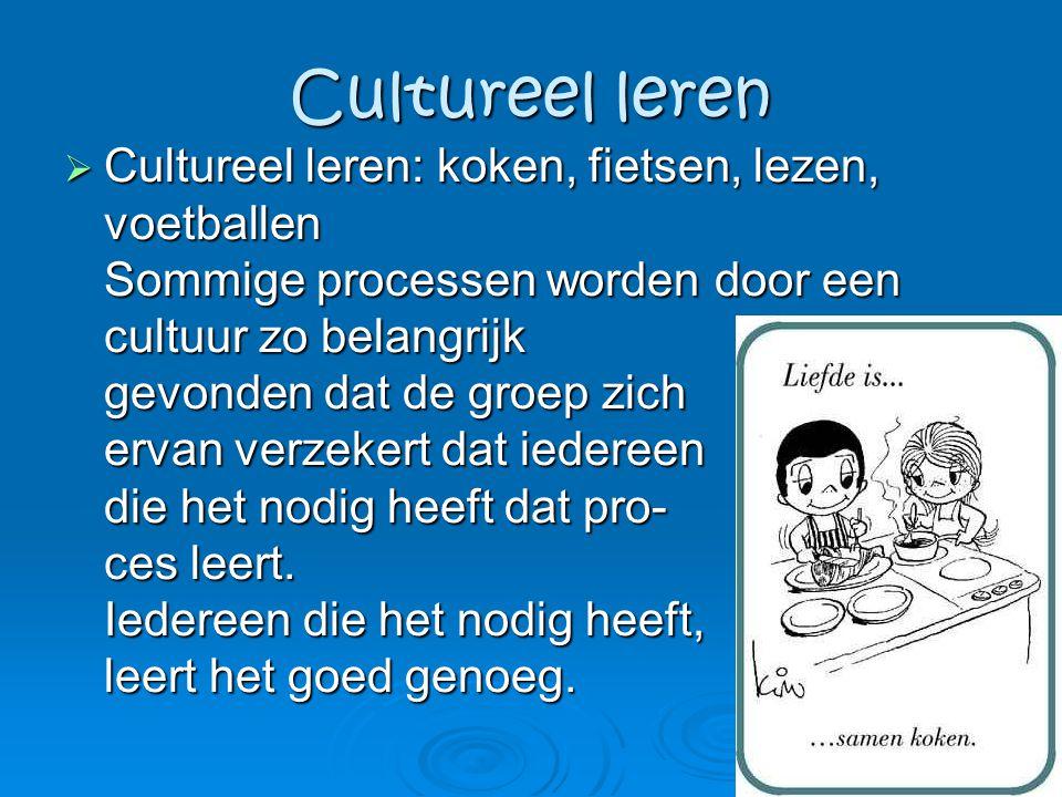 Cultureel leren