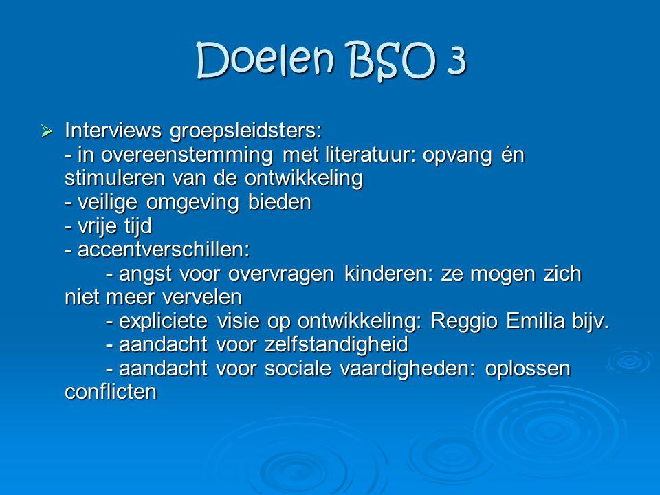 Doelen BSO 3