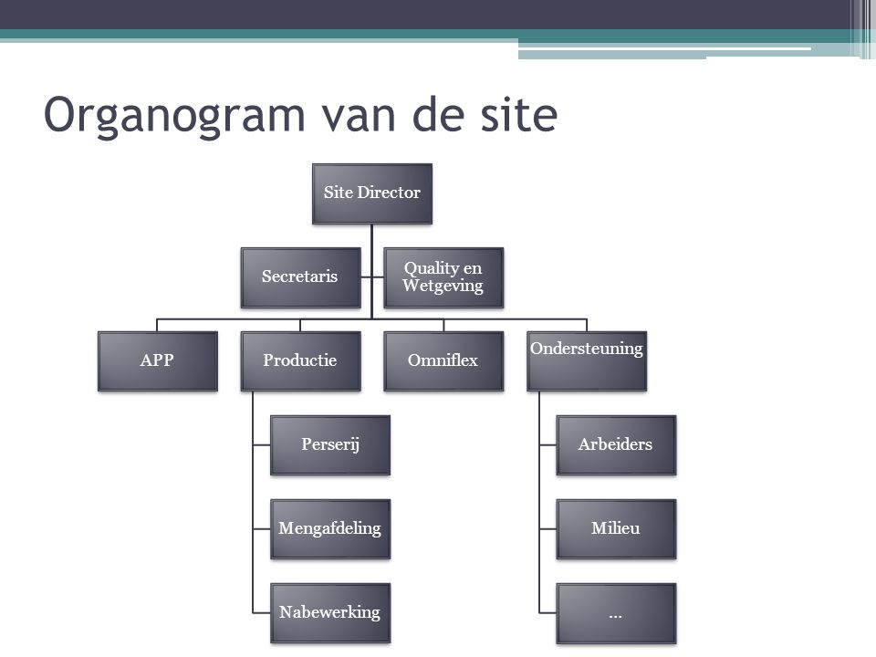 Organogram van de site Site Director Secretaris Quality en Wetgeving