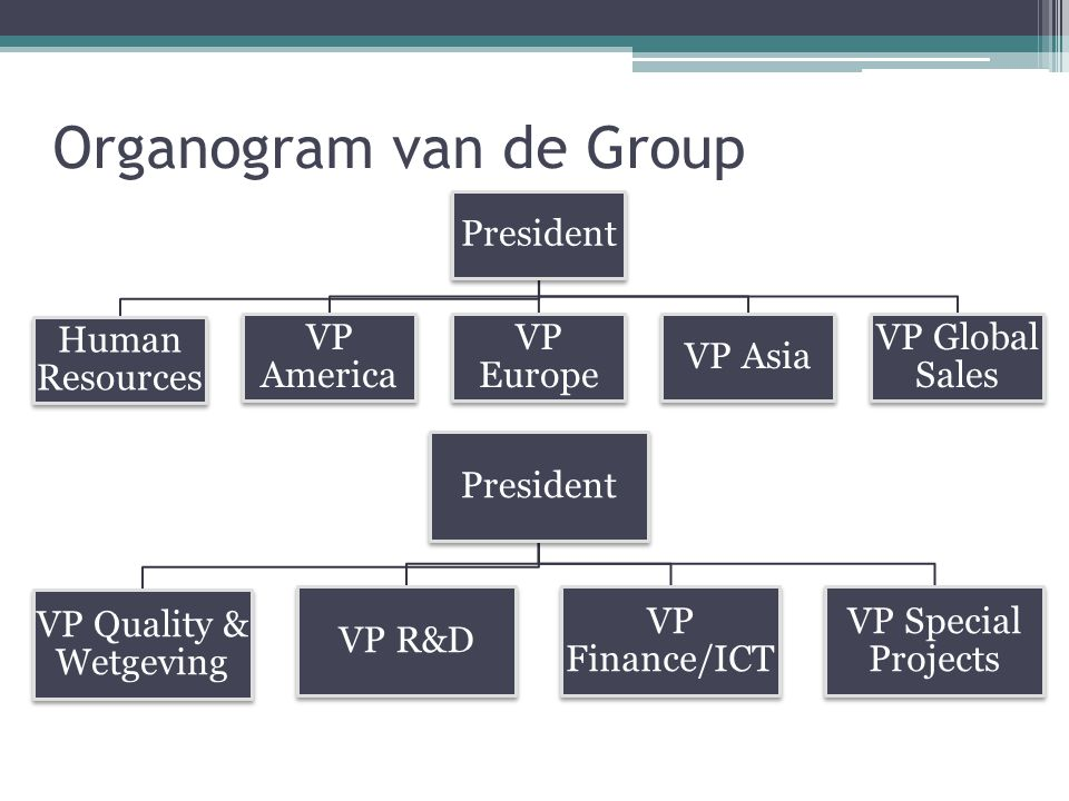 Organogram van de Group