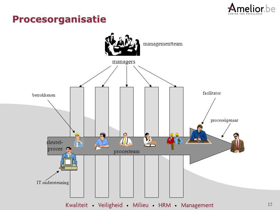 Procesorganisatie managers managementteam sleutel-proces procesteam