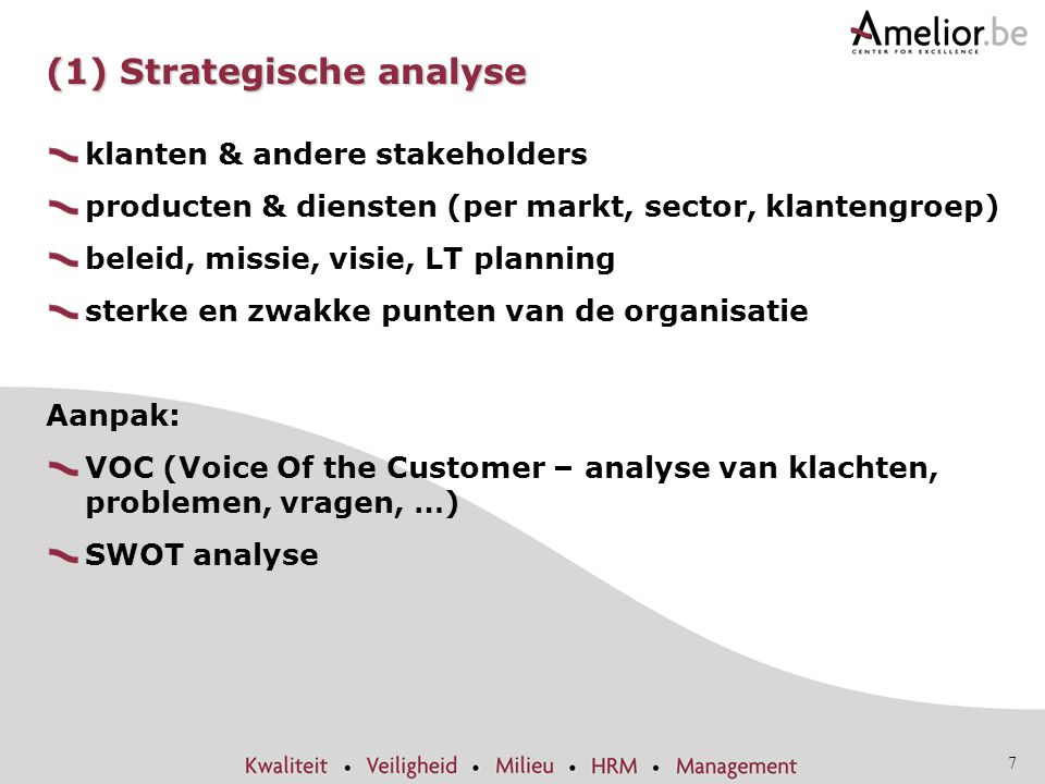 (1) Strategische analyse