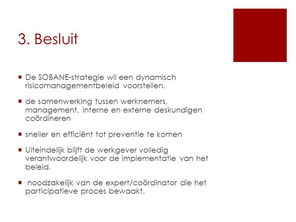 3. Besluit De SOBANE-strategie wil een dynamisch risicomanagementbeleid voorstellen.