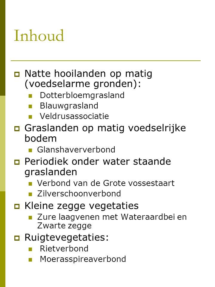 Inhoud Natte hooilanden op matig (voedselarme gronden):
