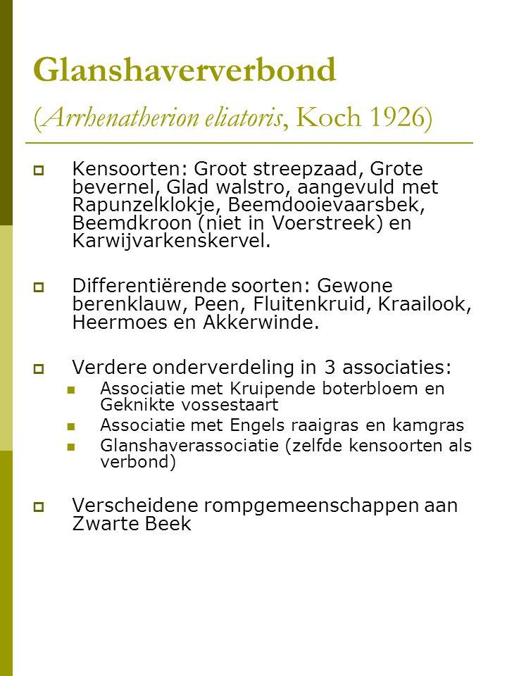 Glanshaververbond (Arrhenatherion eliatoris, Koch 1926)