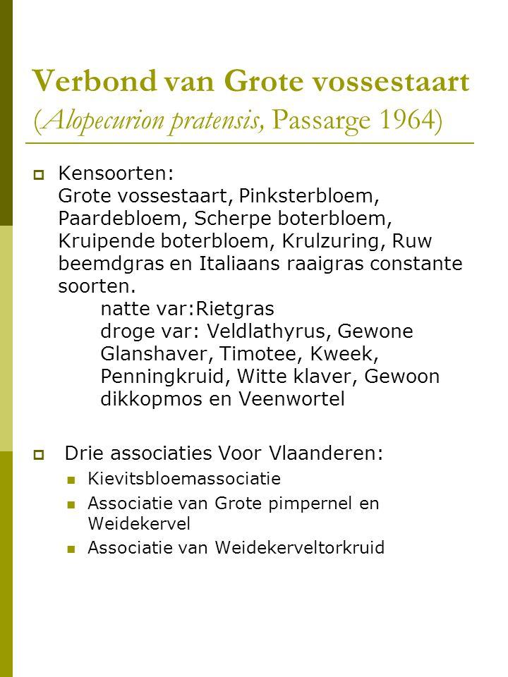 Verbond van Grote vossestaart (Alopecurion pratensis, Passarge 1964)
