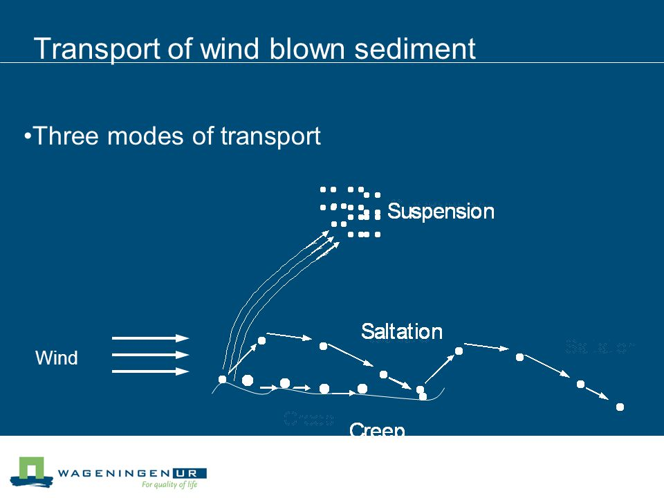 Transport of wind blown sediment