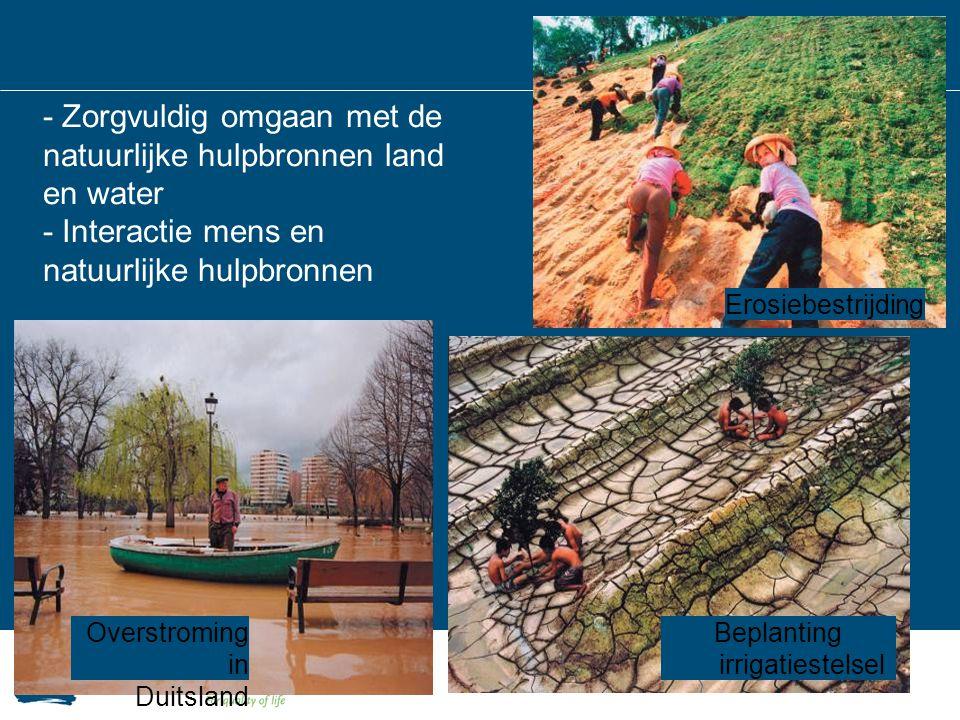 Beplanting irrigatiestelsel