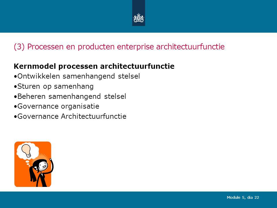 (3) Processen en producten enterprise architectuurfunctie