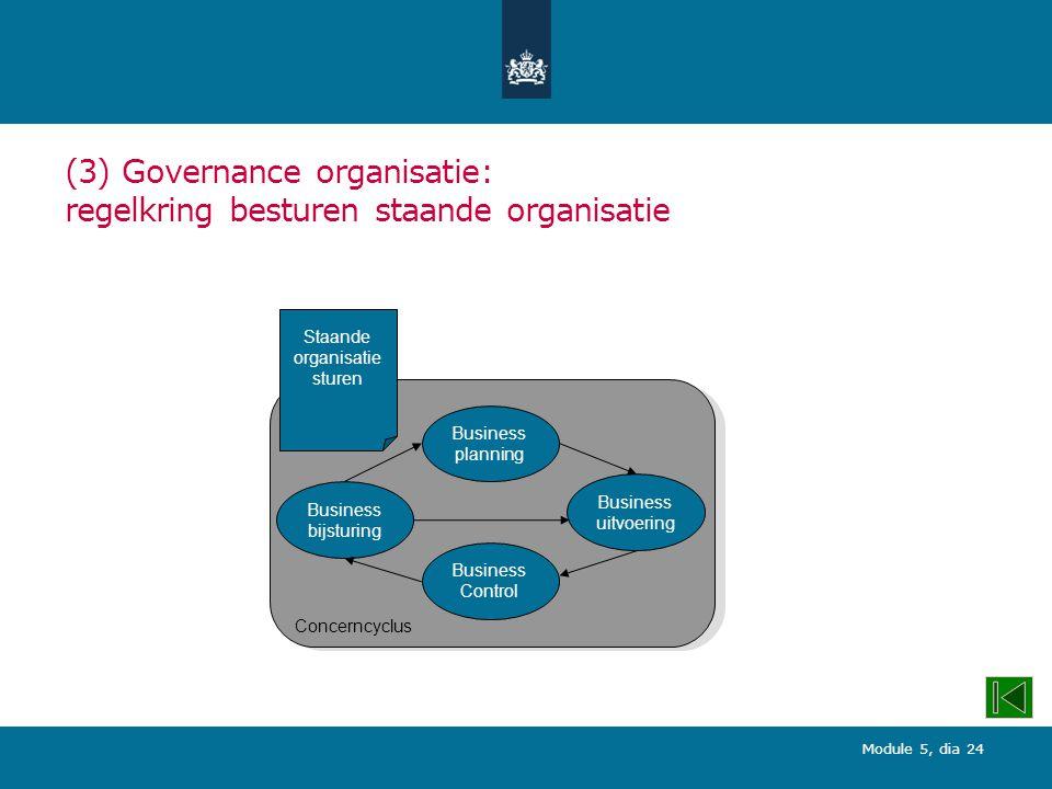(3) Governance organisatie: regelkring besturen staande organisatie