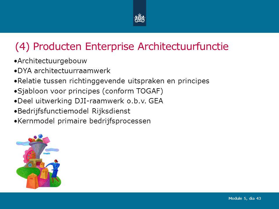 (4) Producten Enterprise Architectuurfunctie