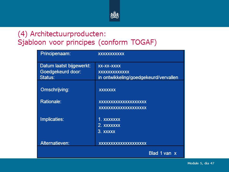 (4) Architectuurproducten: Sjabloon voor principes (conform TOGAF)