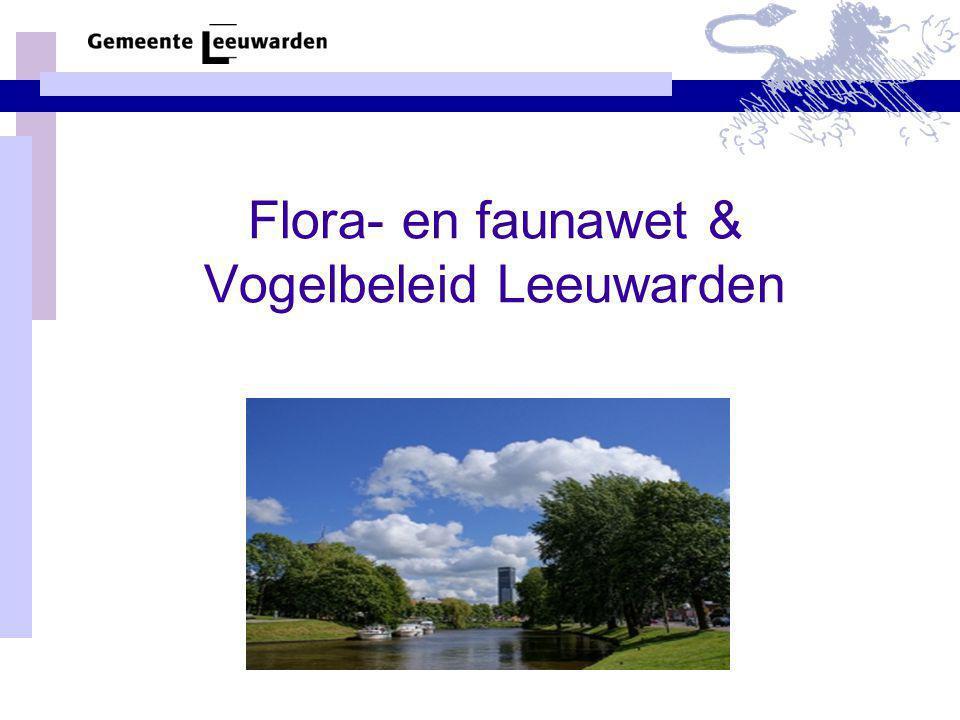 Flora- en faunawet & Vogelbeleid Leeuwarden