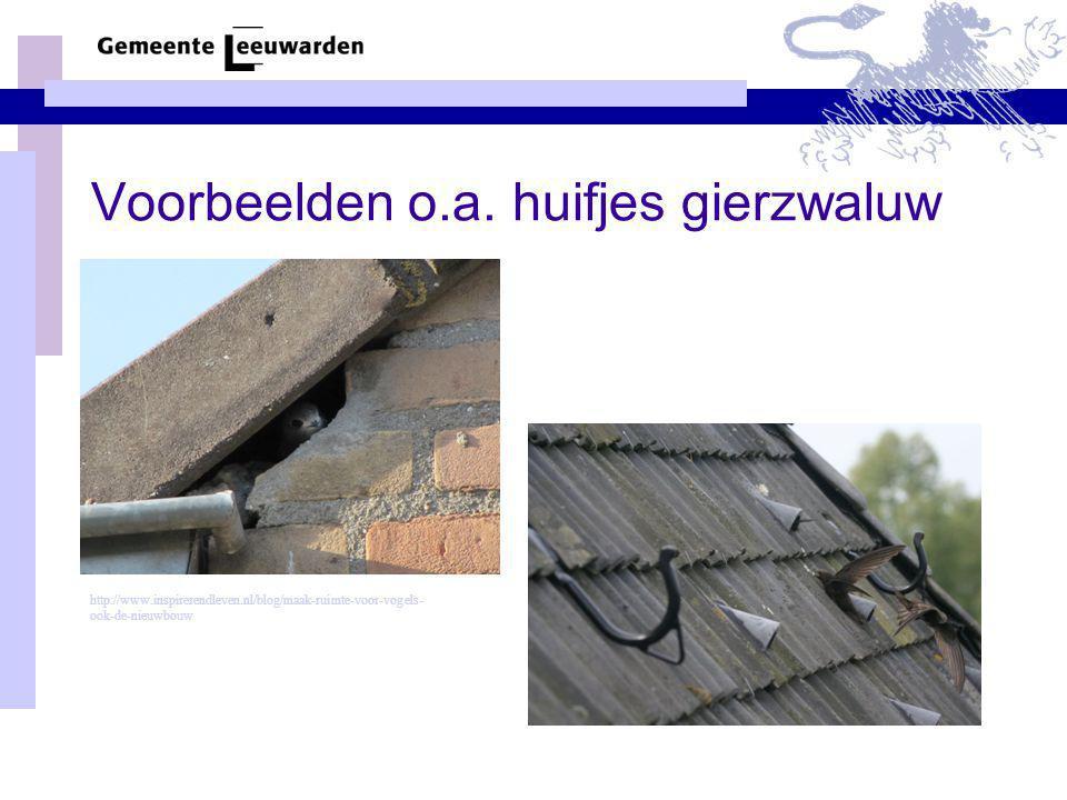 Voorbeelden o.a. huifjes gierzwaluw