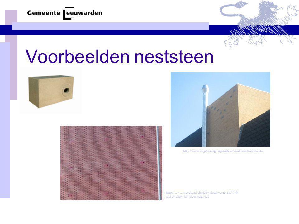 Voorbeelden neststeen