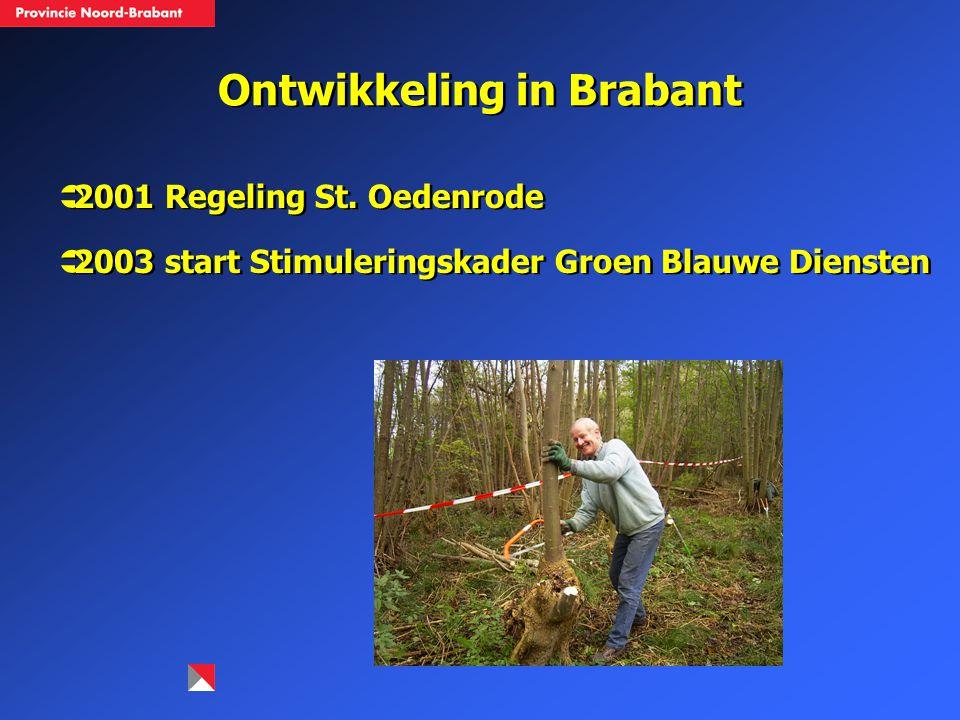 Ontwikkeling in Brabant